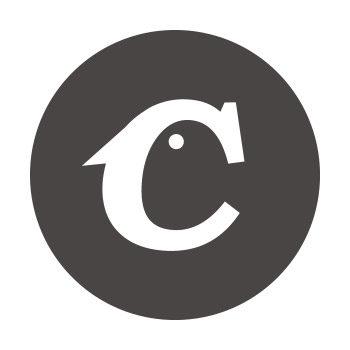 Julien Joyon – Directeur artistique web @Crazybirds